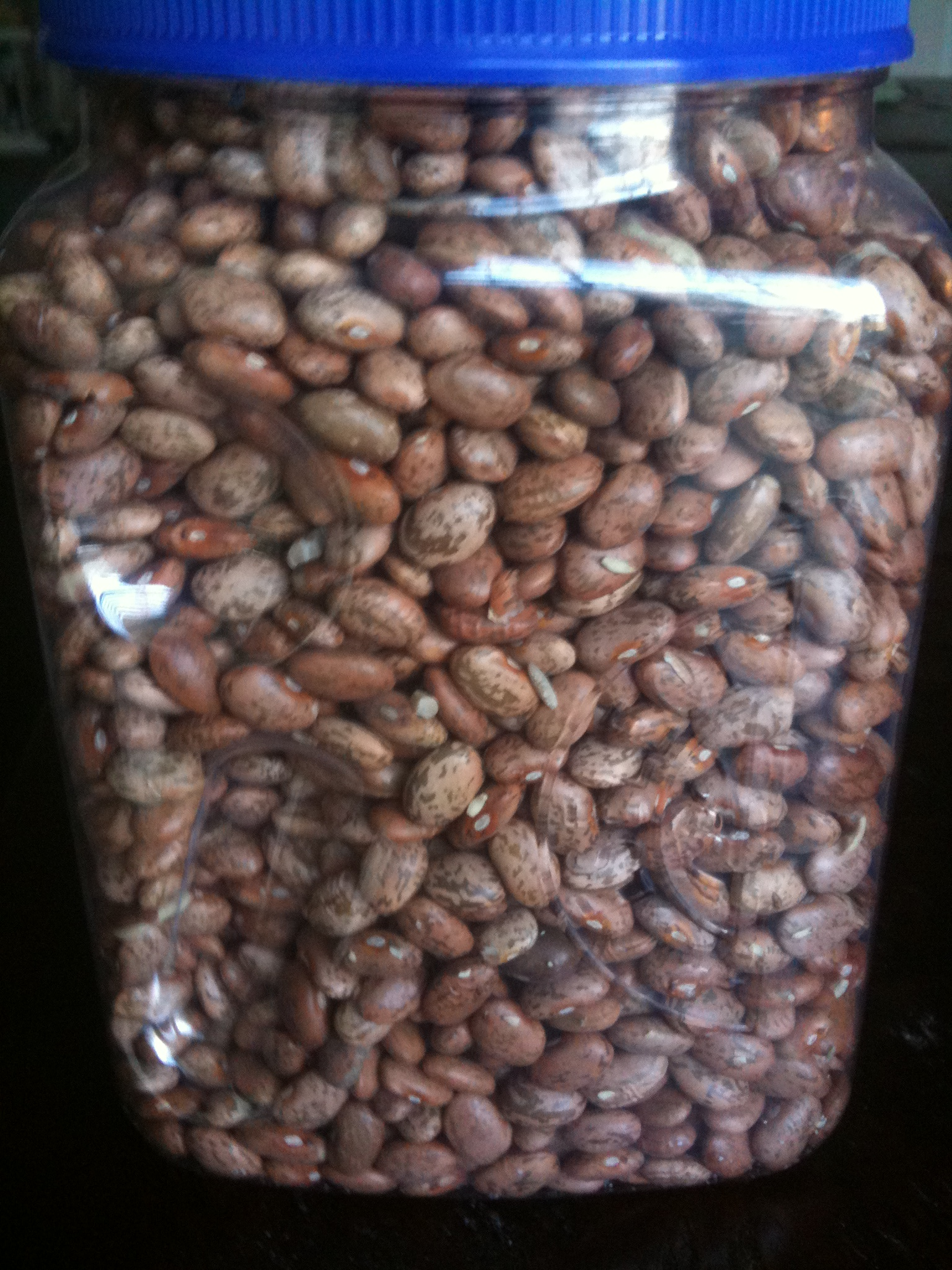 Basic Recipe: Cooking Beans – 10/10/11