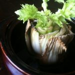 Grow this Vegetable from Trash – 3/17/12