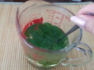 Stirred Mint leaves