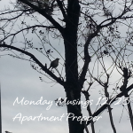 Monday Musings 10/23/2013