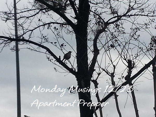 Monday Musings 12232013