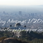 Monday Musings:  1/20/2014
