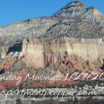 Monday Musings 1/27/2014