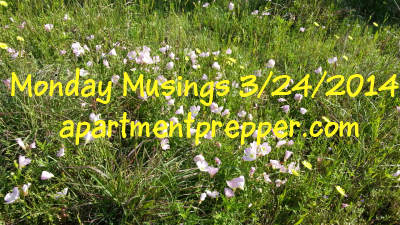 Monday Musings 32414