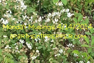 Monday Musings 4142014