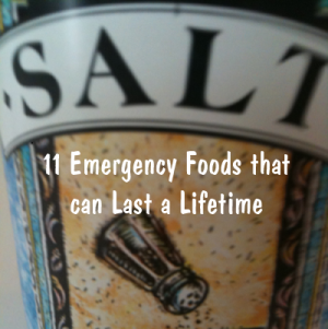11 Emergency Foods that can Last a Lifetime