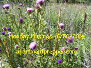 Monday Musings 06302014