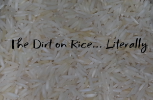 The Dirt on Rice... Literally