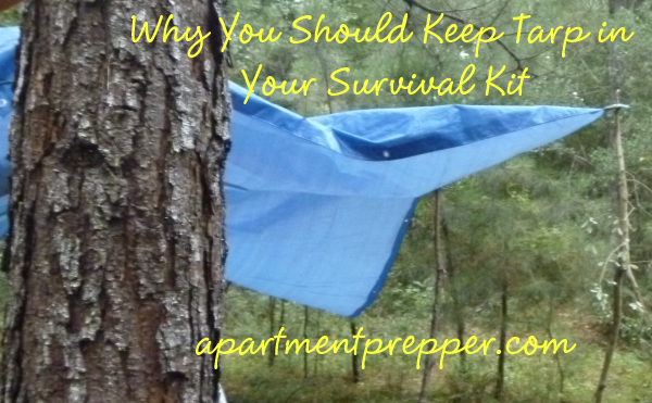 Why You Should Keep Tarp in Your Survival Kit