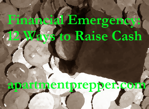 Financial Emergency  12 Ways to Raise Cash
