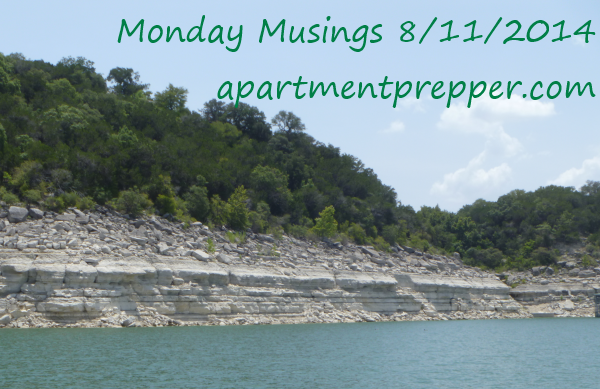 Monday Musings 8112014