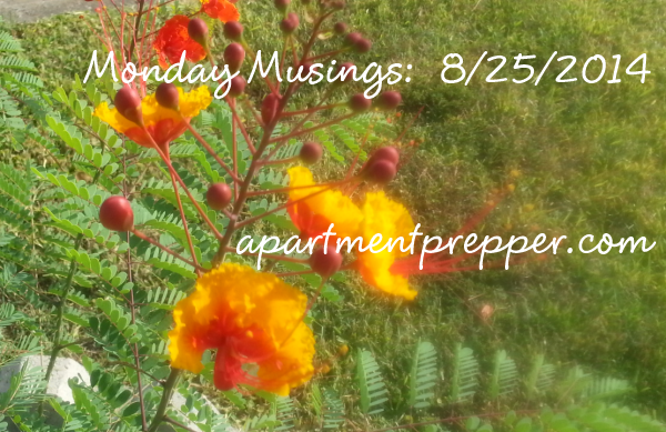 Monday Musings 8252014