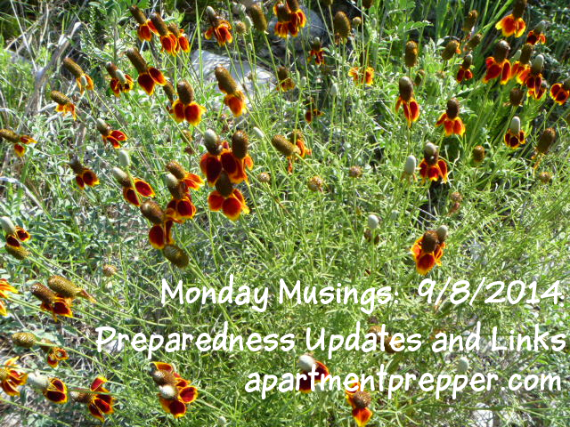 Monday Musings - Preparedness Updates and Links  09082014