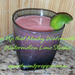 Use Up that Mushy Watermelon – Watermelon Slushie