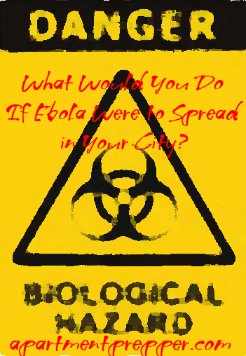 What would you do if ebola were to spread in your city