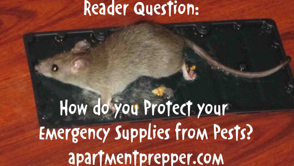 protect your emergency supplies from pests1