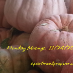 Monday Musings:  11/24/2014