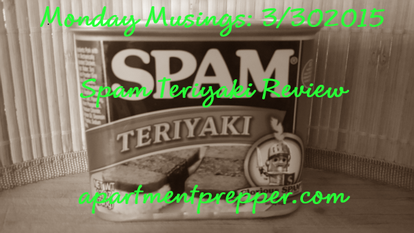 Spam Teriyaki Review