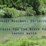 Monday Musings 5/11/2015:  Because You Can Never have Enough Water