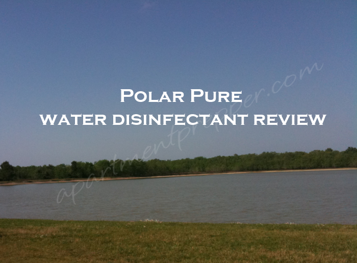 Polar Pure Review
