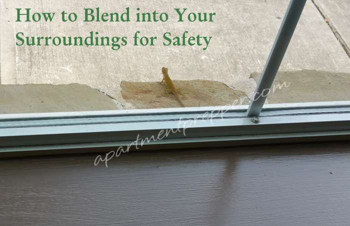 How to blend into your surroundings for safety
