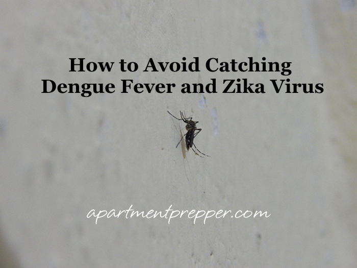 How to Avoid Catching Dengue Fever and Zika Virus