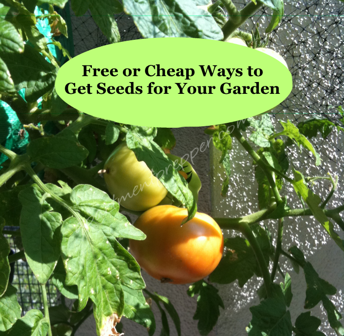 Cheap Ways To Do Your Garden: Free Or Cheap Ways To Get Seeds