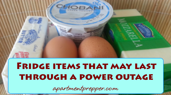Fridge Items that may last through a power outage
