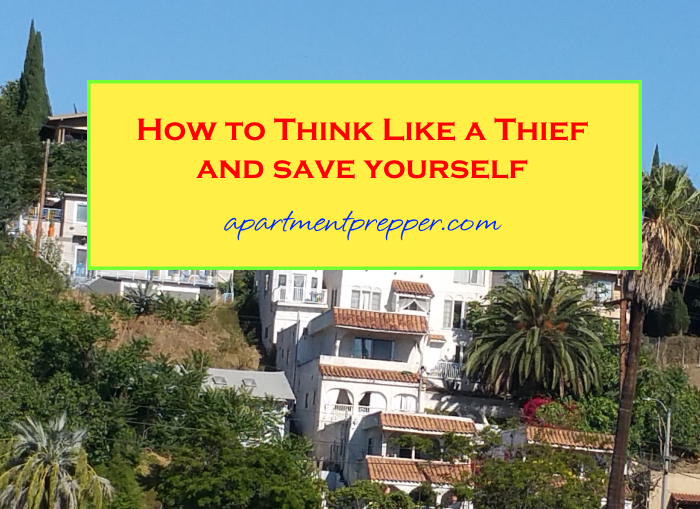 How to think like a thief and save yourself