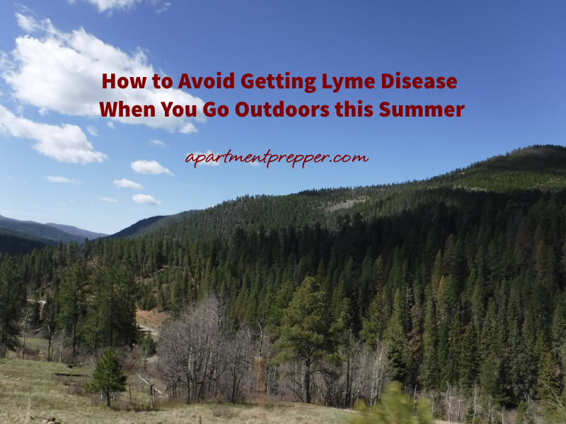 How to Avoid Getting Lyme Disease When You Go Outdoors this Summer