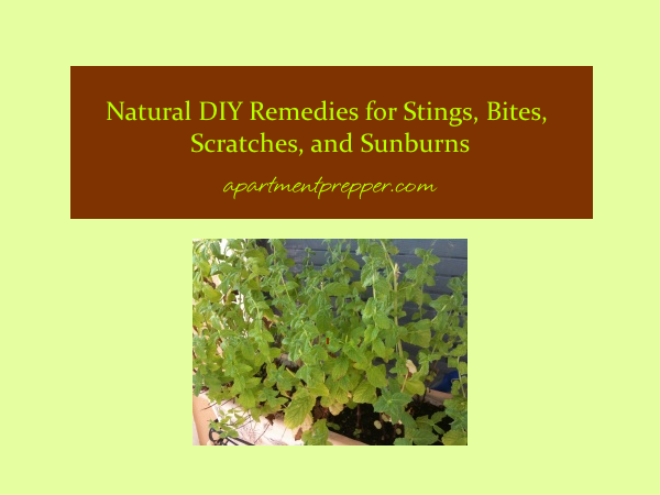 Essential Oils Natural Remedies Book Amazon