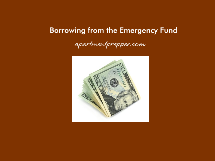 Borrowing from the Emergency Fund