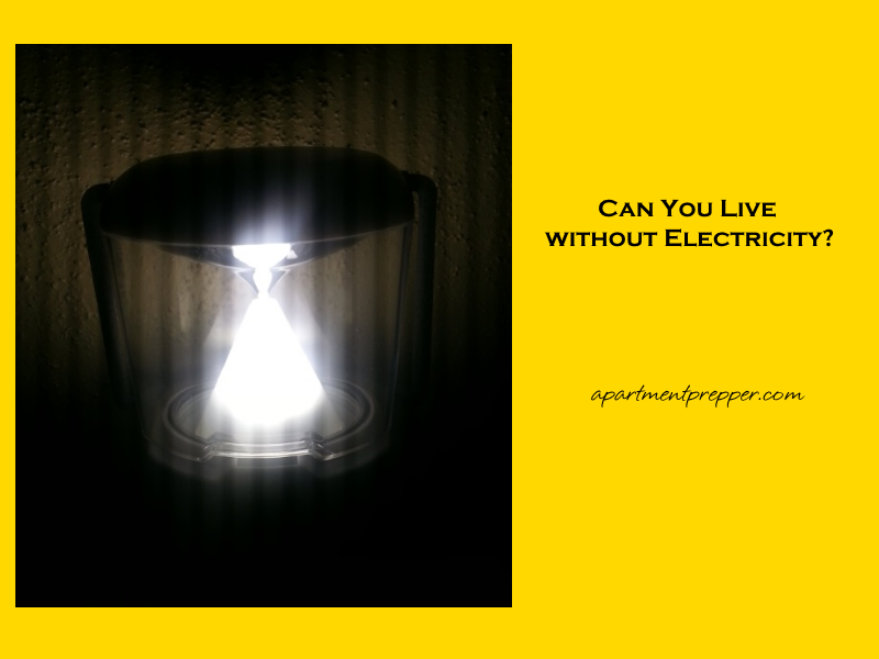 Can You Live without Electricity1
